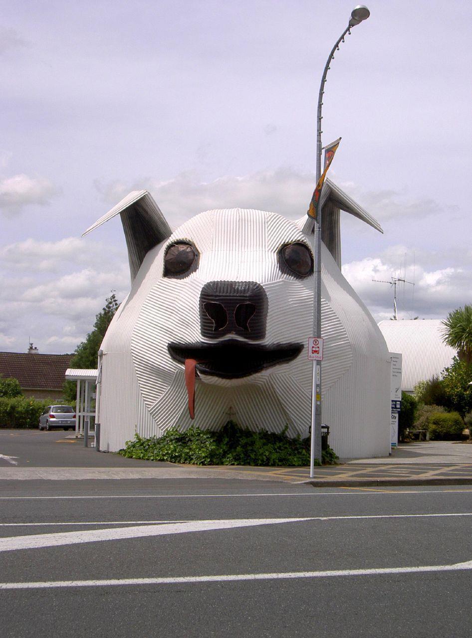 Dog Buildings Features Building Design